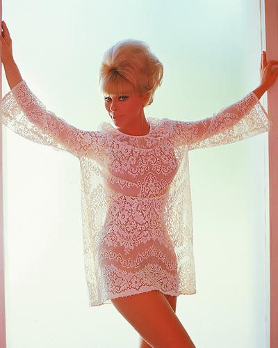 This is an image of 265708 Elke Sommer Photograph & Poster