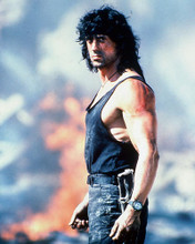 This is an image of 266192 Sylvester Stallone Photograph & Poster