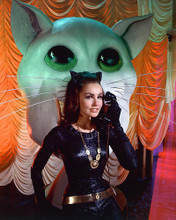 This is an image of 267035 Julie Newmar Photograph & Poster