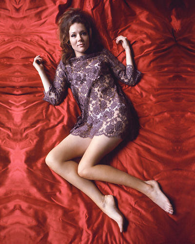 This is an image of 267078 Diana Rigg Photograph & Poster