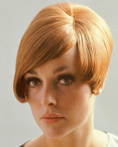 This is an image of 267532 Sharon Tate Photograph & Poster