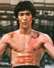 This is an image of 269338 Bruce Lee Photograph & Poster
