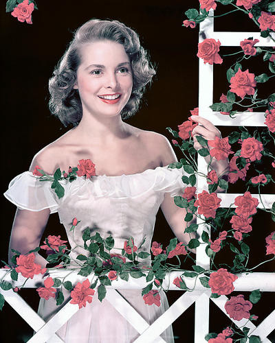 This is an image of 269739 Janet Leigh Photograph & Poster