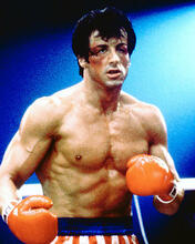 This is an image of 276665 Sylvester Stallone Photograph & Poster