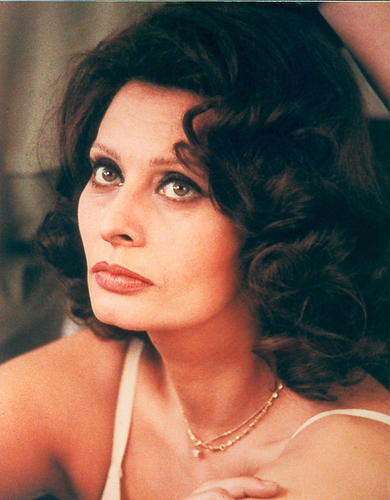 This is an image of 280572 Sophia Loren Photograph & Poster