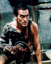 This is an image of 280758 Bruce Campbell