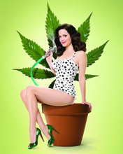 This is an image of 280780 Mary-Louise Parker