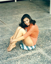 This is an image of 281042 Pier Angeli Photograph & Poster