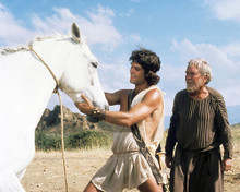 This is an image of 281353 Clash of the Titans Photograph & Poster