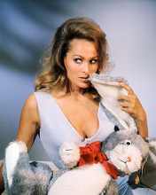This is an image of 281413 Ursula Andress Photograph & Poster