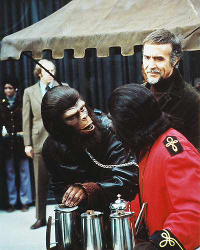 This is an image of 282498 Conquest of the Planet of the Apes Photograph & Poster