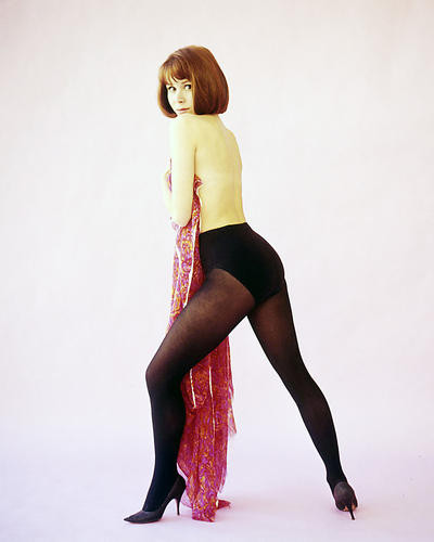 This is an image of 290886 Judy Carne Photograph & Poster