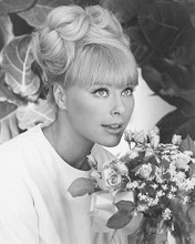 This is an image of 190333 Elke Sommer Photograph & Poster
