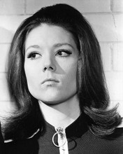 This is an image of 190760 Diana Rigg Photograph & Poster