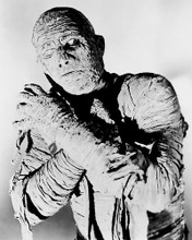This is an image of 191314 the Mummy Photograph & Poster