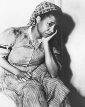 This is an image of 171134 Butterfly Mcqueen Photograph & Poster