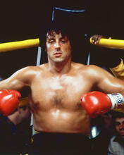 This is an image of 264664 Rocky Ii Photograph & Poster