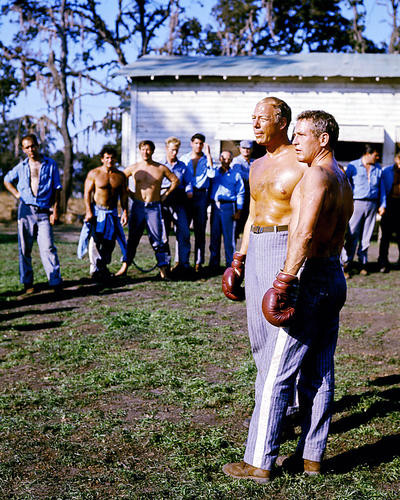 This is an image of 273981 Cool Hand Luke Photograph & Poster