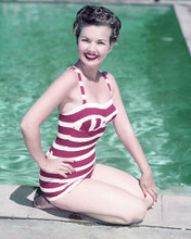 This is an image of 278115 Gale Storm Photograph & Poster