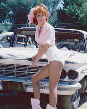 This is an image of 278189 Roz Kelly Photograph & Poster