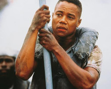 This is an image of 247181 Cuba Gooding Jr Photograph & Poster