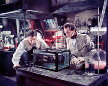 This is an image of 257548 Curse of Frankenstein Photograph & Poster