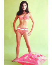This is an image of 265012 Linda Harrison Photograph & Poster