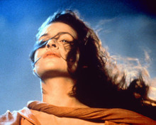 This is an image of 267202 Army of Darkness Photograph & Poster