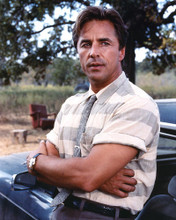 This is an image of 271616 Don Johnson Photograph & Poster