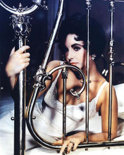 This is an image of 271817 Elizabeth Taylor Photograph & Poster