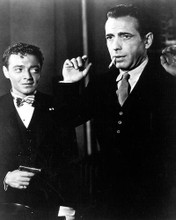 This is an image of 186340 The Maltese Falcon Photograph & Poster