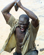 This is an image of 274171 Djimon Hounsou Photograph & Poster