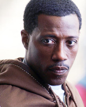 This is an image of 277843 Wesley Snipes Photograph & Poster