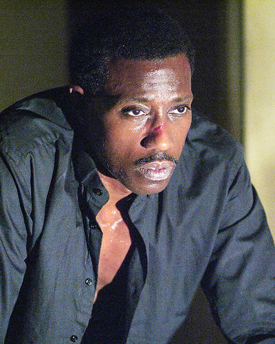 This is an image of 277845 Wesley Snipes Photograph & Poster