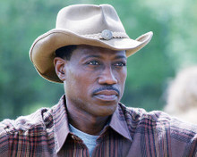 This is an image of 277844 Wesley Snipes Photograph & Poster