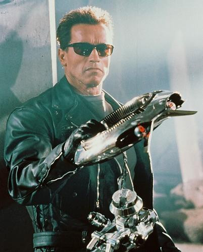This is an image of 237305 Arnold Schwarzenegger Photograph & Poster