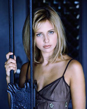This is an image of 254794 Sarah Michelle Gellar Photograph & Poster
