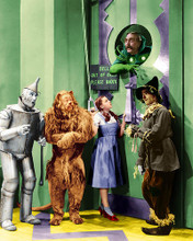 This is an image of 255824 The Wizard of Oz Photograph & Poster