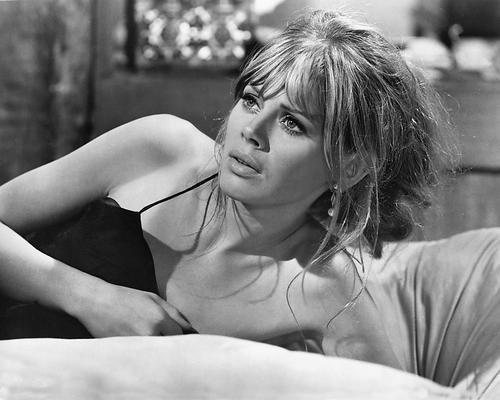 This is an image of 192588 Britt Ekland Photograph & Poster