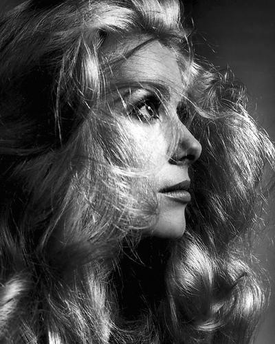 This is an image of 192664 Catherine Deneuve Photograph & Poster