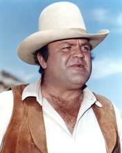 This is an image of 282158 Dan Blocker Photograph & Poster