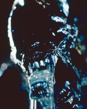 This is an image of 282243 Alien: Resurrection Photograph & Poster