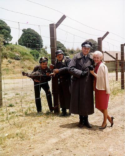 This is an image of 282433 Hogan's Heroes Photograph & Poster