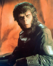 This is an image of 282453 Planet of the Apes Photograph & Poster