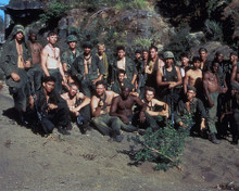 This is an image of 282713 Platoon Photograph & Poster