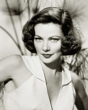 This is an image of 283296 Gene Tierney Photograph & Poster