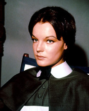 This is an image of 283810 Pamela Franklin Photograph & Poster