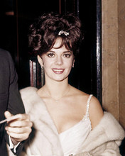 This is an image of 283123 Natalie Wood Photograph & Poster