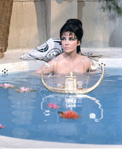 This is an image of 283486 Elizabeth Taylor Photograph & Poster