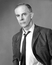 This is an image of 193216 Harry Morgan Photograph & Poster